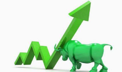 १६ कम्पनीको सेयर मूल्यमा उच्च वृद्धि, जलविद्युत् क्षेत्रमा चमक